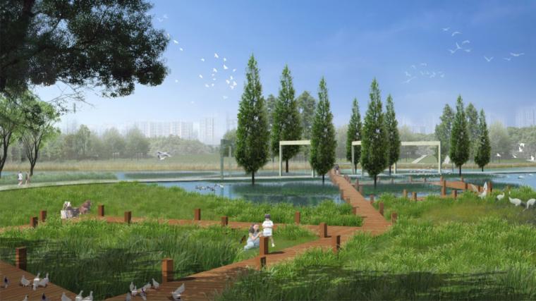 安徽芜湖商务文化中心中央公园景观设计方案-生态认知园效果图