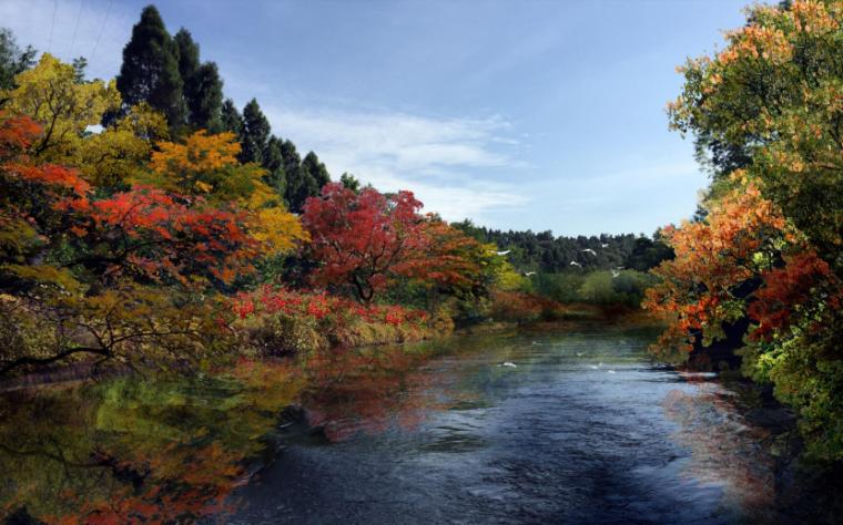 [四川]生态绿廊水系治理旅游休闲景观方案-红叶湾效果图