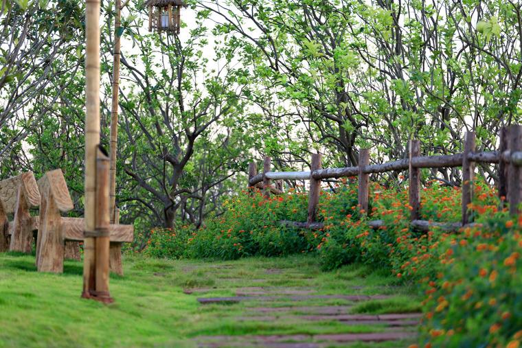成都新希望种子乐园实景图31