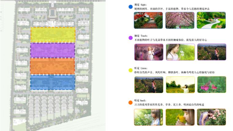 [山东]济南庄严山水豪宅大区景观方案设计-植物感官特色