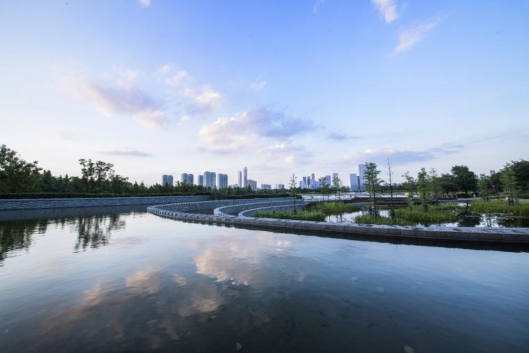 南京河西生态公园实景图8