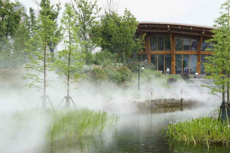 南京河西生态公园实景图9