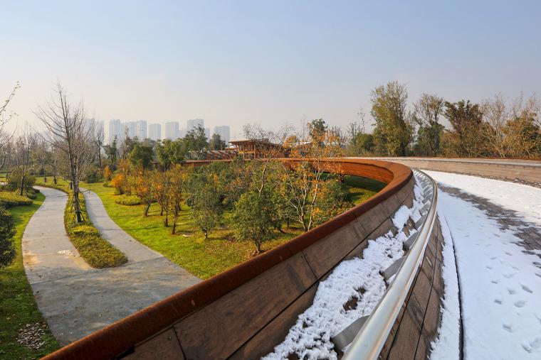 南京河西生态公园实景图11