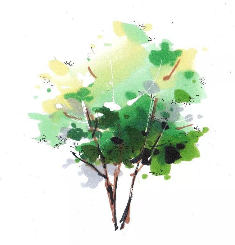 五分钟教会你,园林景观手绘马克笔上色技法_15