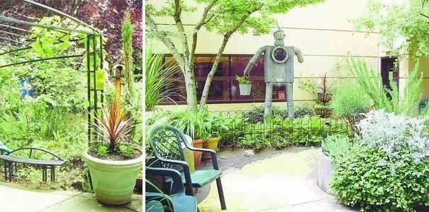 医疗康养空间中的植物景观设计_11