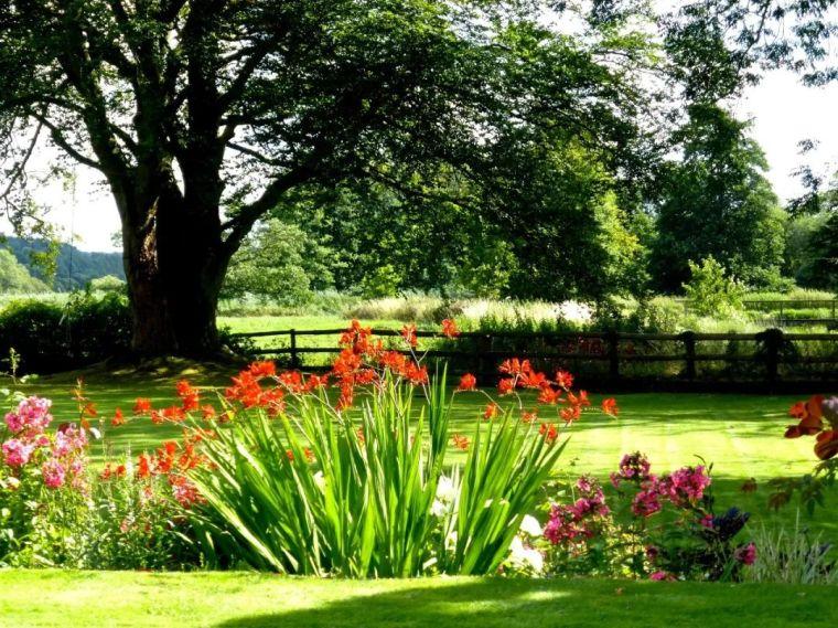 医疗康养空间中的植物景观设计_1