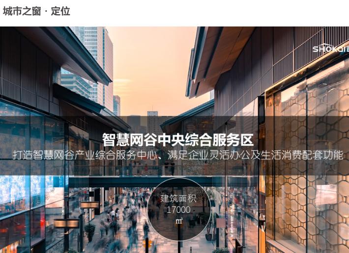 杭州智慧网谷整体城市规划设计方案文本2020-城市之窗定位设计