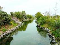 河道治理及生态修复施工组织设计