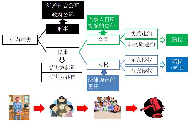 项目环境与合同风险(PPT,34P)-法律分类