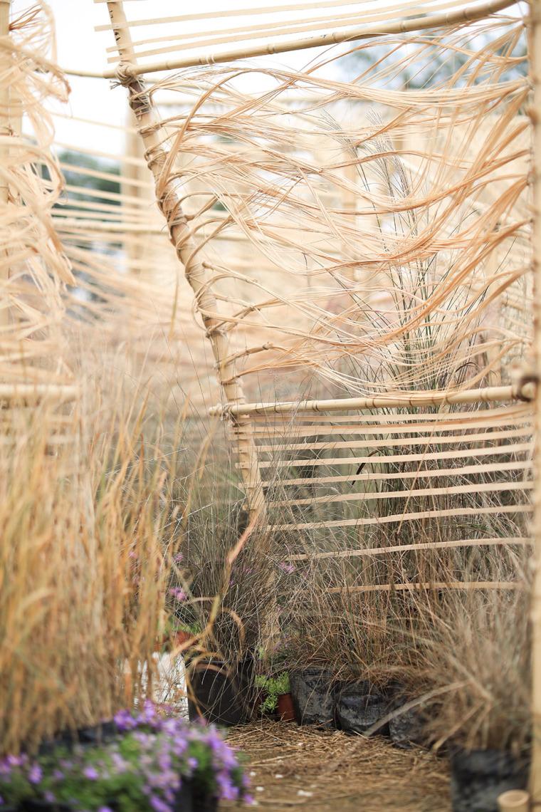 成都第三届北林国际花园建造节竹构装置实景图28