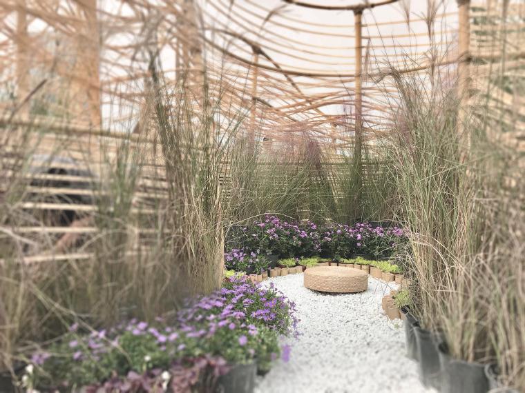 成都第三届北林国际花园建造节竹构装置实景图29
