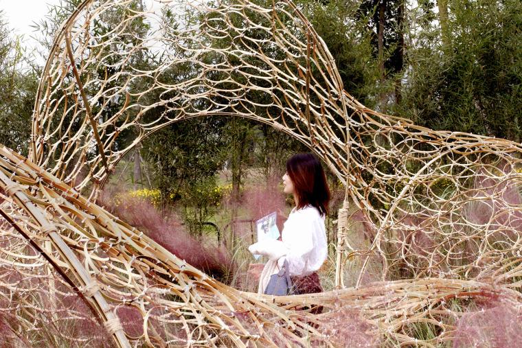 成都第三届北林国际花园建造节竹构装置实景图35