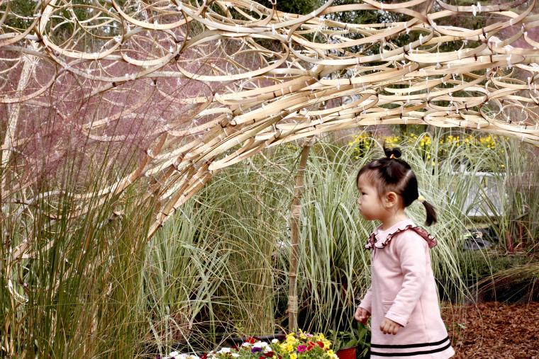 成都第三届北林国际花园建造节竹构装置实景图37