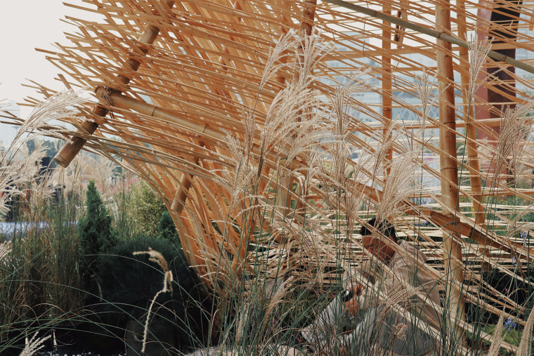 成都第三届北林国际花园建造节竹构装置实景图21