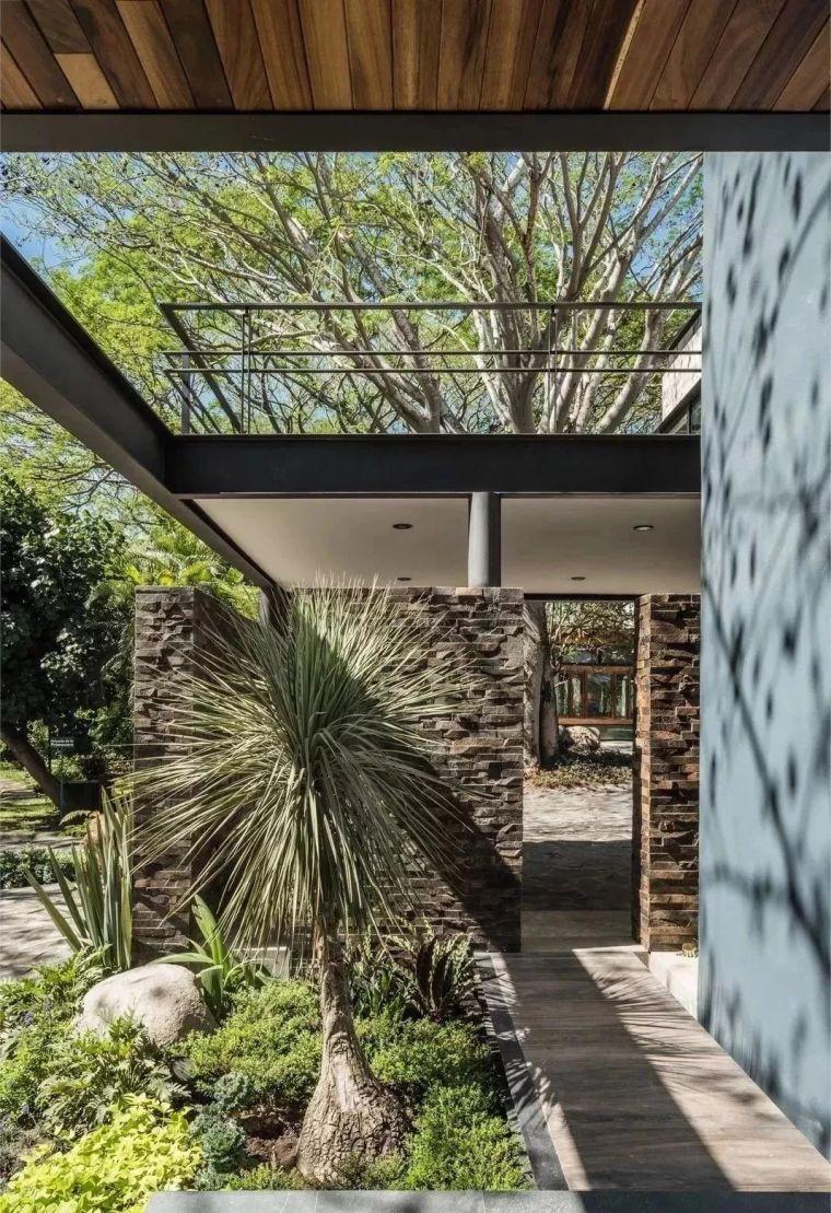 多种低维护的庭院植物景观,值得参考_10