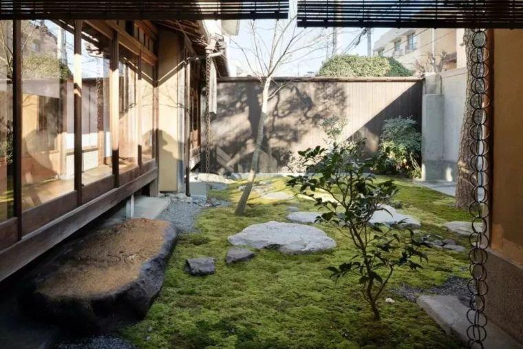 多种低维护的庭院植物景观,值得参考_9