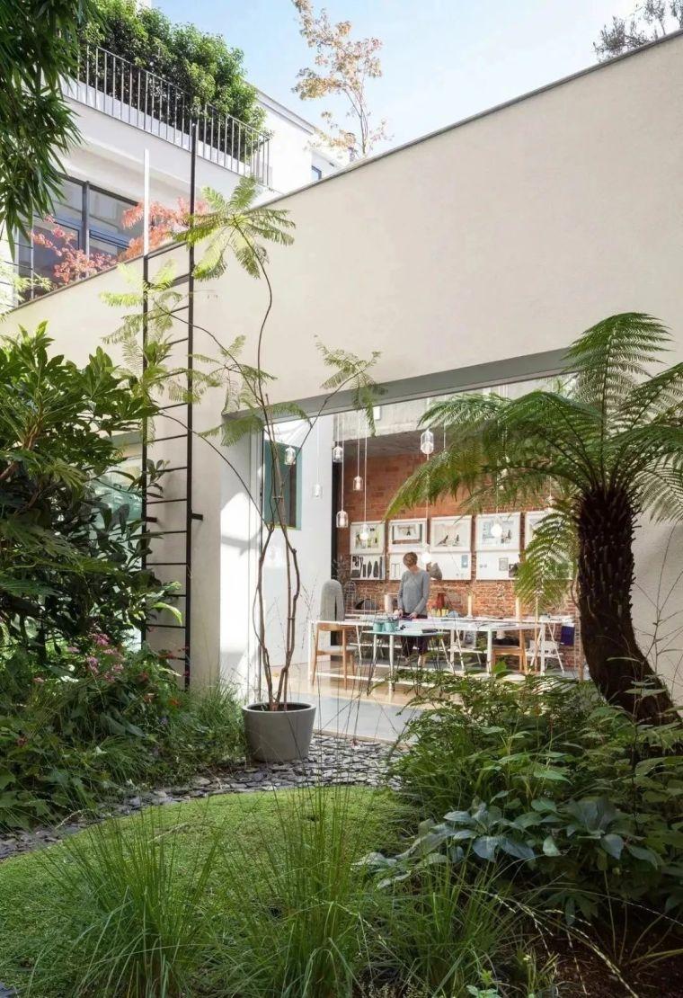 多种低维护的庭院植物景观,值得参考_8