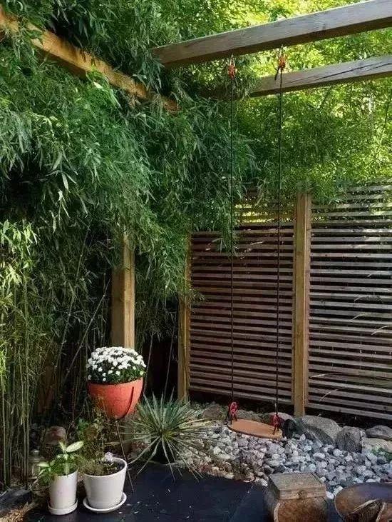 多种低维护的庭院植物景观,值得参考_12