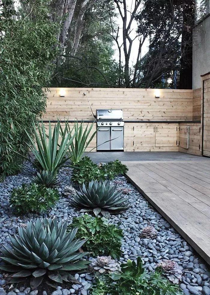 多种低维护的庭院植物景观,值得参考_11