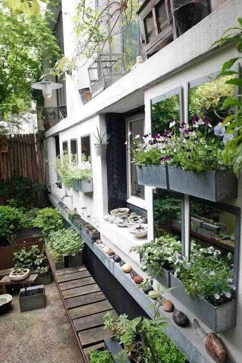 多种低维护的庭院植物景观,值得参考_17