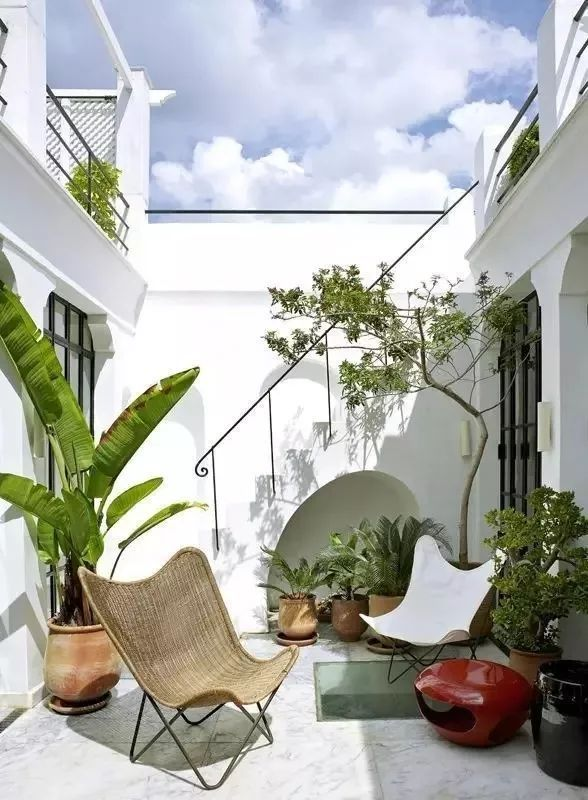 多种低维护的庭院植物景观,值得参考_6