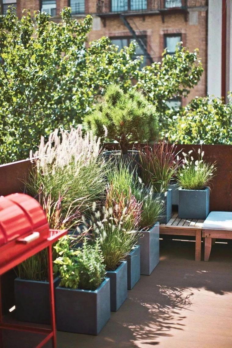 多种低维护的庭院植物景观,值得参考_4
