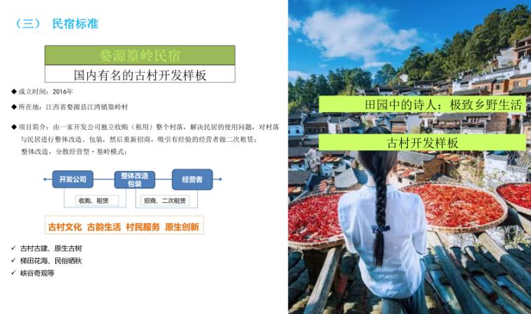 甘肃天水南山云端田园综合体方案文本-2019-民宿标准