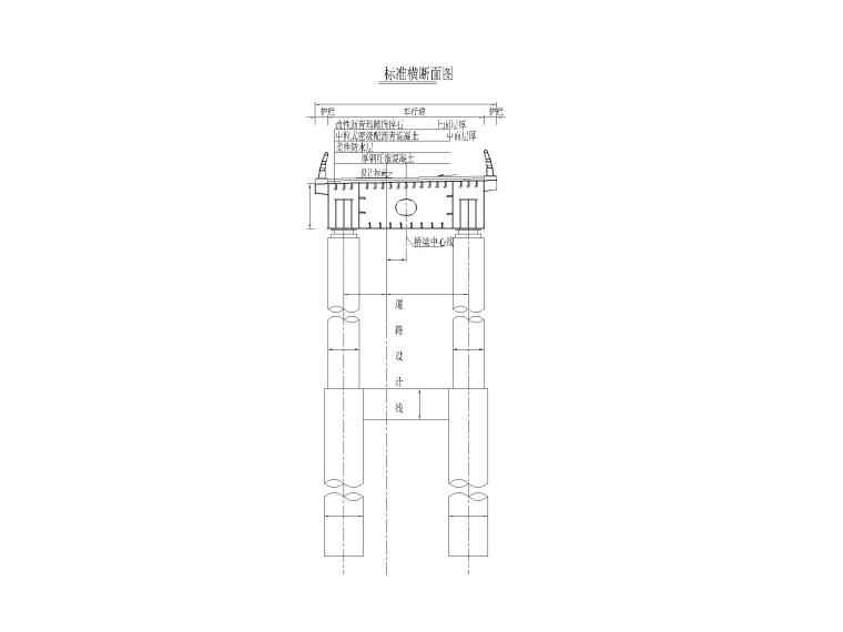 [重庆]城市主干路车行匝道桥梁设计图-匝道桥标准横断面布置图