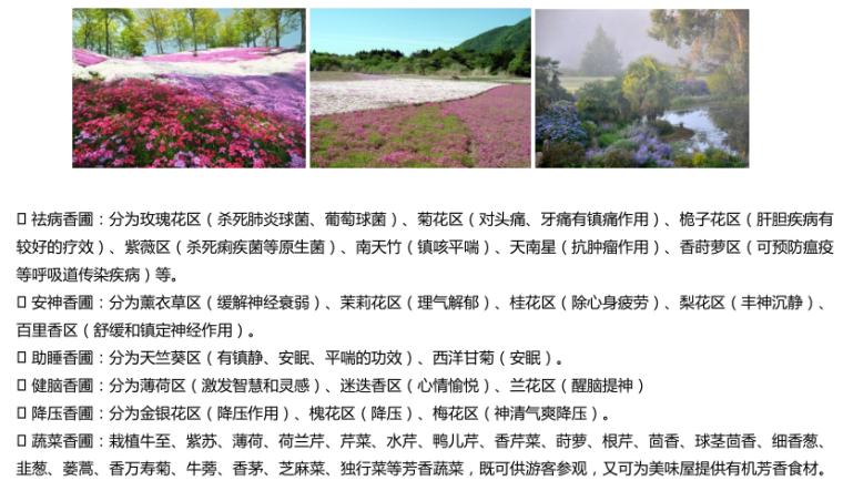 [江苏]邳州植物园项目初步方案构想-9-植物养生区