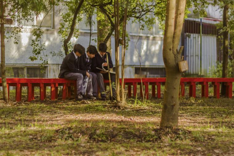 智利'无限长凳'装置实景图7