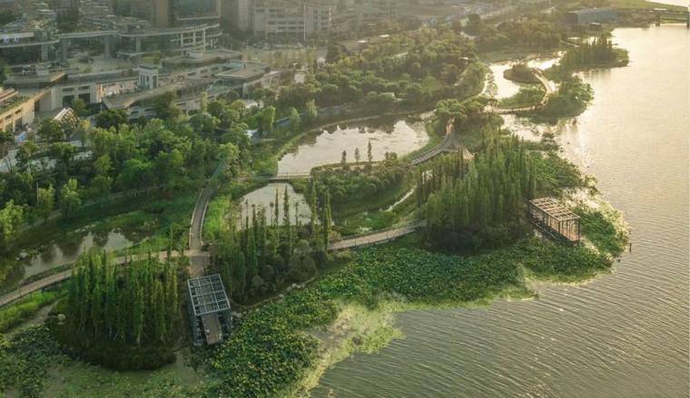 遂宁南滨江公园实景图7