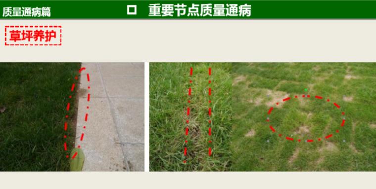 知名地产景观工程营造管控技术交流(145页)-草坪养护
