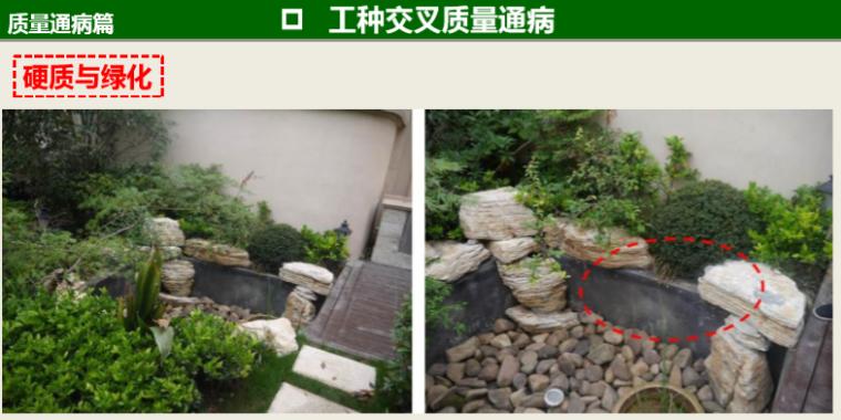 知名地产景观工程营造管控技术交流(145页)-硬质与绿化