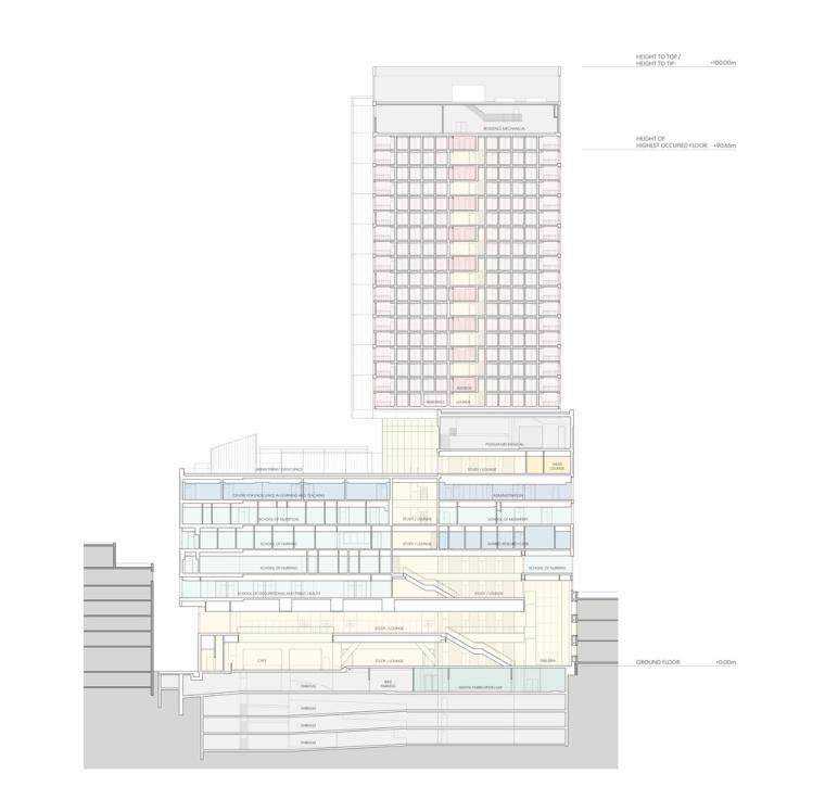 瑞尔森大学达芙妮考克威尔健康科学中心剖面图