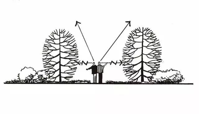 干货 植物景观设计总则_9