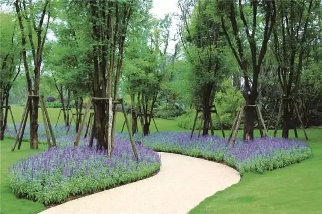 干货 植物景观设计总则_13
