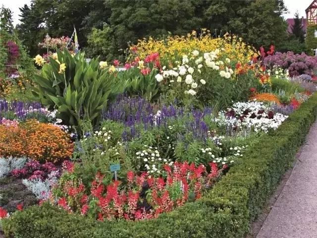 干货 植物景观设计总则_23