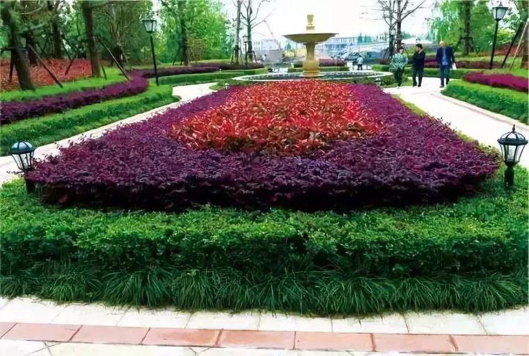 干货 植物景观设计总则_20