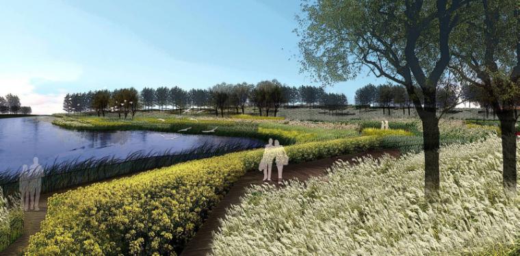 [湖北]孝感美丽乡村概念规划设计方案-环湖湿地景观带效果图