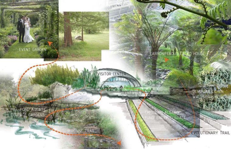 景观设计画方案,总共分几步?_4