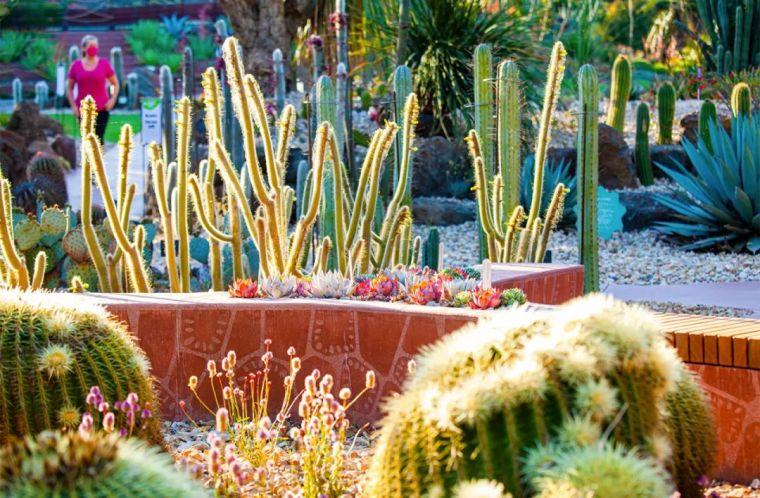 漂亮!维多利亚皇家植物园新干旱花园上线_4