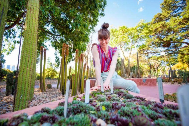 漂亮!维多利亚皇家植物园新干旱花园上线_6