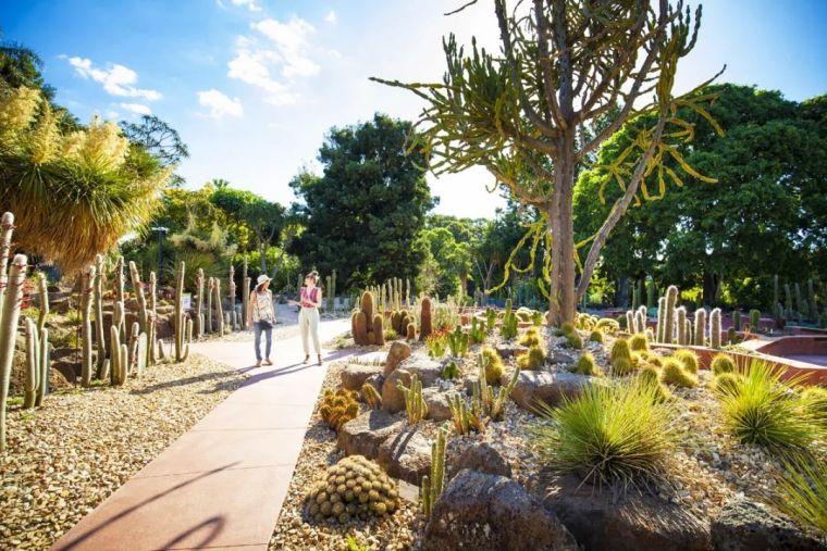 漂亮!维多利亚皇家植物园新干旱花园上线_8