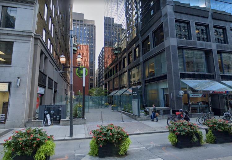 北美大城市唐人街的死与生:多伦多篇_13