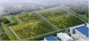 地产设计做好成本优化,单项目能省几千万!_16