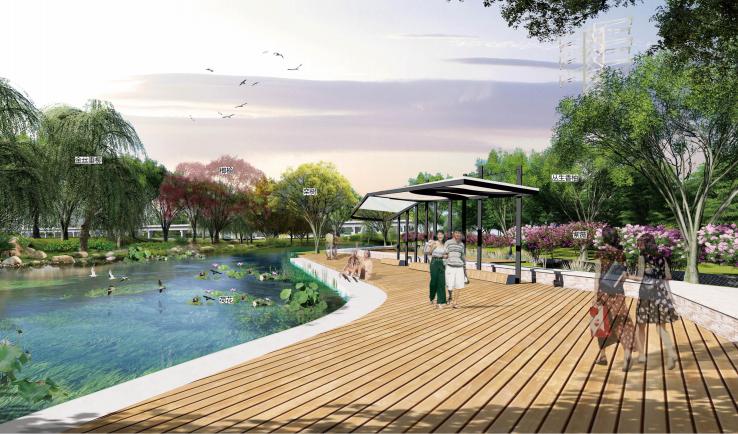 [长沙]城市交通干道及雨水花园景观设计_5
