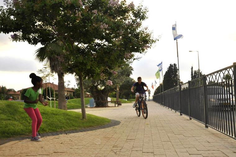以色列宾亚米纳体育公园_4