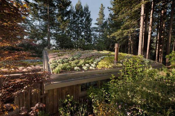景观设计中超赞的屋顶花园!_6