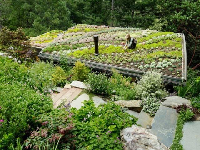 景观设计中超赞的屋顶花园!_7