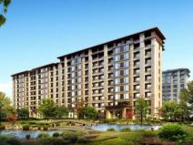 知名地产住宅设计要求及标准(213页)